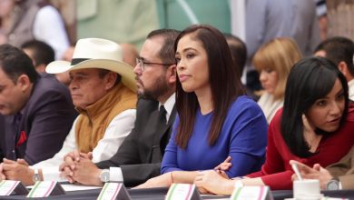 Diputada local Miriam Tinoco Soto.